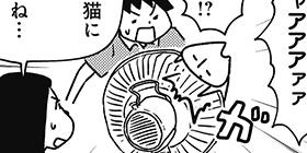 [1031回]猫田びより
