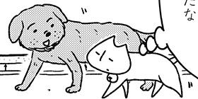 [1151回]猫田びより